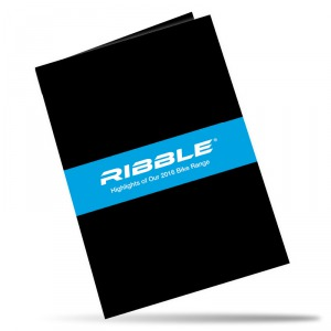 Card Flyers - Folded 350gms