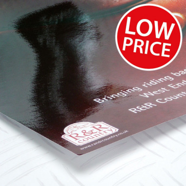 Laminated Large Posters 210gms